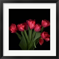 Framed Red Tulips 6
