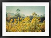 Framed Blissful Country IV