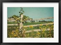 Framed Blissful Country V