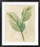 Framed Sago Palm Leaves Neutral Crop