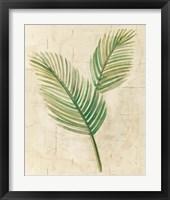 Framed Sago Palm Leaves Neutral Crop