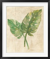 Framed Monstera Leaves Neutral Crop