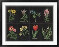Botanical on Black Chart I Framed Print
