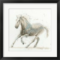 Stallion II Framed Print