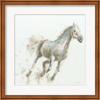 Framed Stallion I