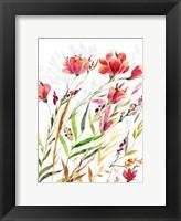 Framed Meadow III