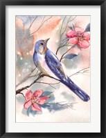 Framed Watercolor Bird