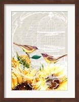 Framed Sunflower Birds I