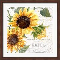 Framed Summertime Sunflowers II