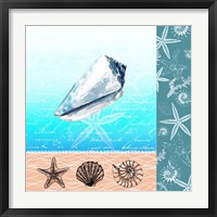 Nautical Design IV Framed Print