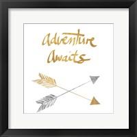 Framed Adventure Arrows