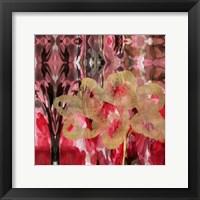 Framed Daisy Abstract