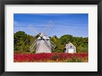 Framed Higgins Farm Windmill