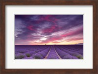 Framed Pink and Purple