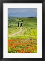 Framed Road to Terrapille Farm