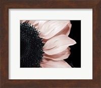 Framed Whisper of Pink
