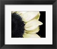 Splashes of Blonde Framed Print
