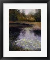 Framed Oregon Water Lilies