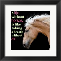 Framed Horse Quote 7