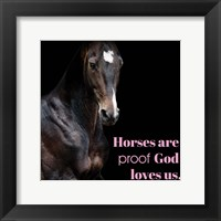 Framed Horse Quote 8