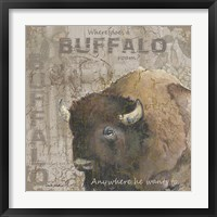 Where Does a Buffalo Roam Framed Print