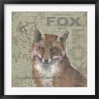 Where Does a Fox Trot Framed Print