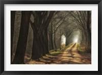 Framed Paths