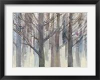 Framed Forest Light