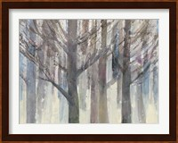 Framed Forest Light