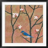Framed Cherry Blossoms I