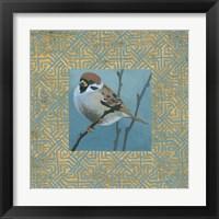 Framed Sparrow