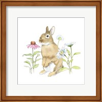 Framed Wildflower Bunnies IV