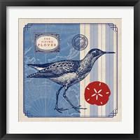 Framed Sea Bird I