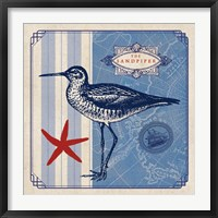 Framed Sea Bird II