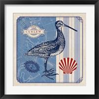 Framed Sea Bird III