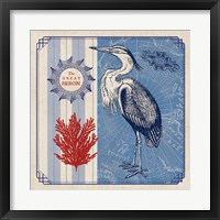 Framed Sea Bird IV