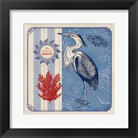 Framed Sea Bird IV