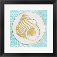 Framed Summer Shells III Teal and Gold