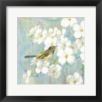 Spring Dream V Framed Print