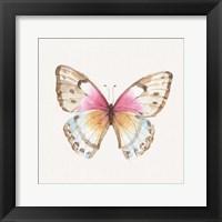 Colorful Breeze XI Framed Print