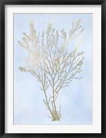 Gold Foil Algae I on Blue - Metallic Foil Framed Print