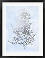 Silver Foil Algae IV on Blue - Metallic Foil Framed Print