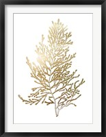 Gold Foil Algae IV - Metallic Foil Framed Print