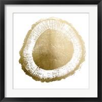 Gold Foil Tree Ring II - Metallic Foil Framed Print