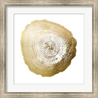 Framed Gold Foil Tree Ring IV - Metallic Foil