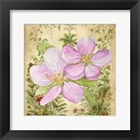 Framed Vintage Apple Blossom I