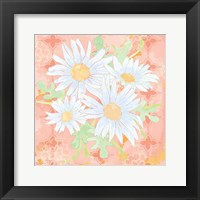 Daisy Patch Coral I Framed Print
