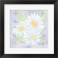 Framed Daisy Patch Serenity II