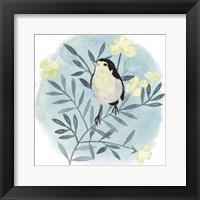 Feathered Friends II Framed Print