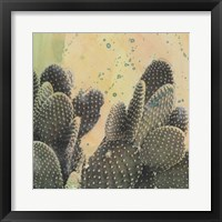 Framed Desert Dreams II